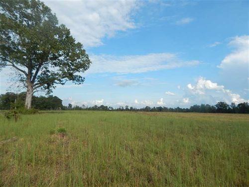 Quiet And Convenient 37 Acres : Enola : Faulkner County : Arkansas
