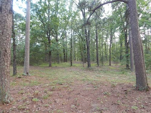 22.48 Acres in Maumelle Estates : Wye : Perry County : Arkansas