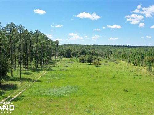 Burbon Lane Recreational, Farm Trac : Robertsdale : Baldwin County : Alabama