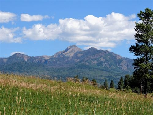 Reserve At Pagosa Peak, Lot 130 : Pagosa Springs : Archuleta County : Colorado