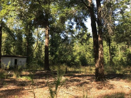 Great Place to Build Place : O'brien : Suwannee County : Florida