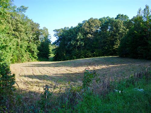 20 Acres Ready Your Dream Home : Bethel Springs : Chester County : Tennessee