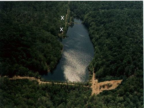 21 Acres TN Spring Lake, Frontier : Lawrenceburg : Wayne County : Tennessee