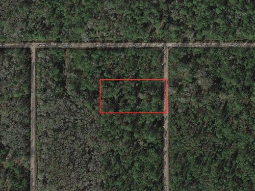 Land Investment Owner Financing : Bunnell : Flagler County : Florida