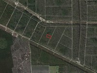 Atv Or Camp Or An Investment : Bunnell : Flagler County : Florida
