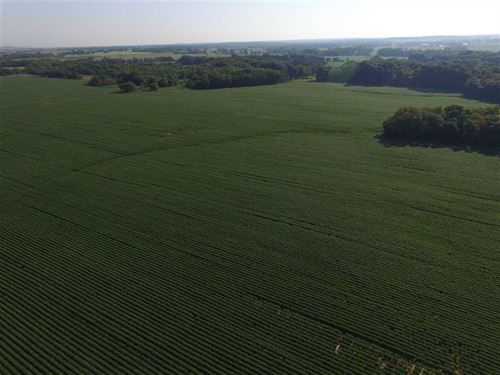 37 Acres Tillable on 75 Highway fo : Caney : Montgomery County : Kansas