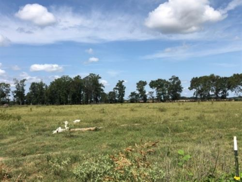 37 Ac, Fenced Pasture With Well : Fort Necessity : Franklin Parish : Louisiana