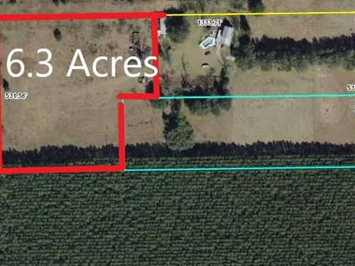 Land, 6.3 Acres Bell, Gilchrist : Bell : Gilchrist County : Florida