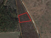 1 Acre Homesite in Midville, GA : Midville : Emanuel County : Georgia