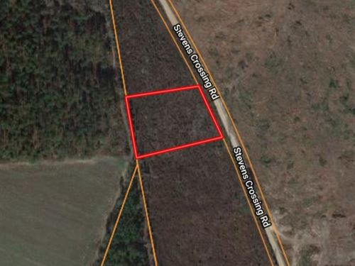 2 Acre Homesite in Midville, GA : Midville : Emanuel County : Georgia