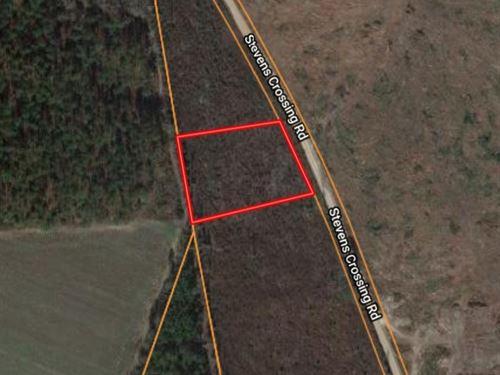 2 Acre Homesite in Midville, GA : Midville : Emanuel County : Georgia