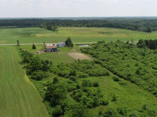 Gentle Slop To Build, Lot 4 : Richland : Oswego County : New York