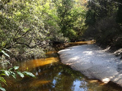 Big Creek Tract : Mobile : Alabama