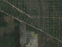 Flagler Estates Investment, Camping : Bunnell : Flagler County : Florida