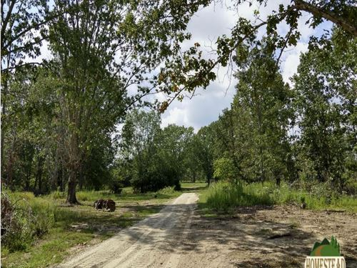 Peaceful Country Homestead : Montier : Shannon County : Missouri