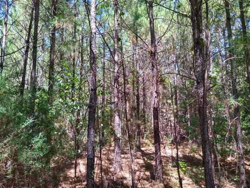 225 Acres -Laurens County, Sc : Clinton : Laurens County : South Carolina