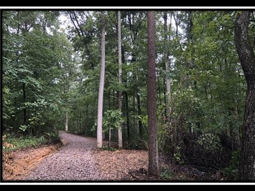Erwin Hollow Escape Tract 2 : Jackson : Ohio