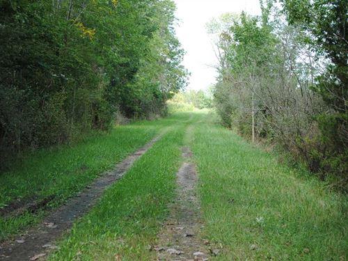 Sugar Creek Sanctuary : Franklin : Johnson County : Indiana