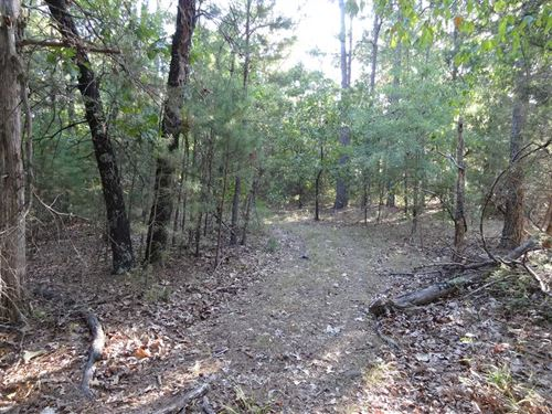 140 Acres Timberland : Casa : Perry County : Arkansas