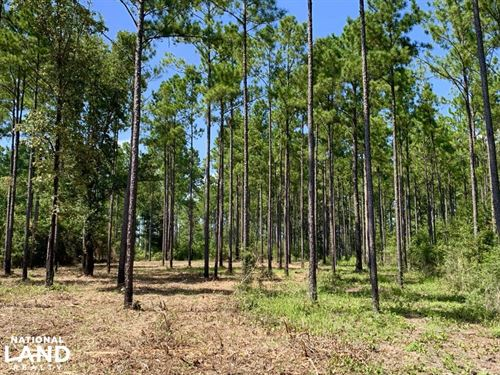 Wilmer Homesite And Recreational Tr : Wilmer : Mobile County : Alabama