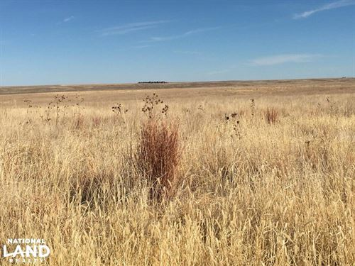 Kiowa County Crp For Sale : Haswell : Kiowa County : Colorado