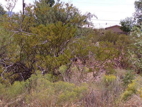 .486 Acres in LA Luz, NM : La Luz : Otero County : New Mexico