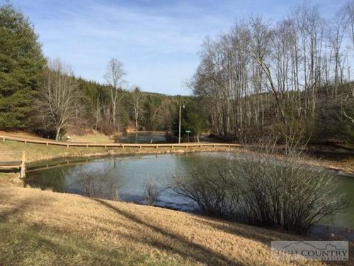 Partially Wooded Lot Gated : Piney Creek : Alleghany County : North Carolina