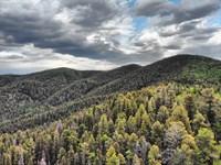 6.5 Acres High Altitude With Trees : Fort Garland : Costilla County : Colorado