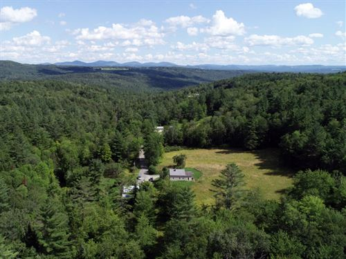 East Hill Forest : Middlesex : Washington County : Vermont