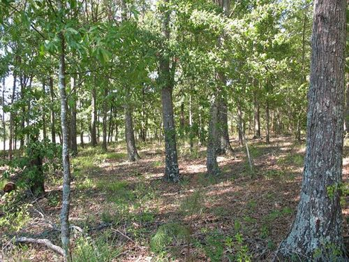 Small Homesites To Choose From : Ramer : Montgomery County : Alabama