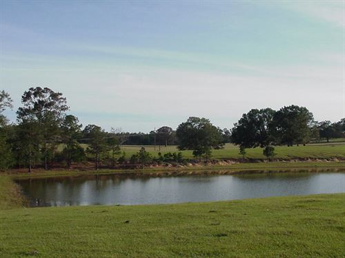 Beautiful Land With Pond In Grady : Grady : Montgomery County : Alabama