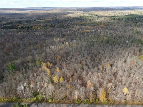 Ojibwa, Lot 2 of Parcel 7456 : Ojibwa : Sawyer County : Wisconsin