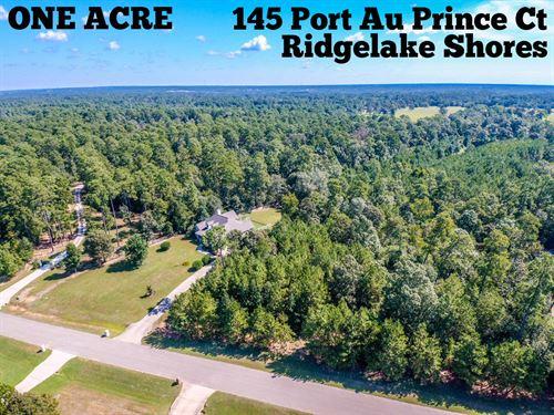 1.06 Acres In Montgomery County : Montgomery : Texas