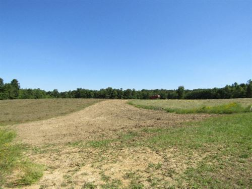 124 Ac Incoming Producing Farm : Deer Lodge : Morgan County : Tennessee