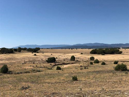 Red Creek Ranch Newton : Pueblo : Colorado