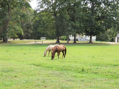 10.82 Acres Equestrian Property : Lancaster : South Carolina