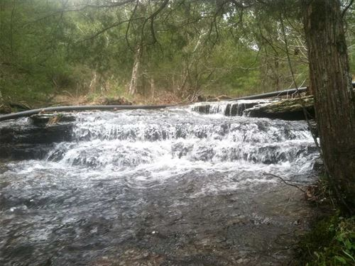 140 Acres With Year Round Creek : Quitman : Van Buren County : Arkansas