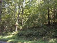 3 Acre Wooded Building Lot Culpeper : Culpeper : Virginia