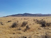 41.42 Acres For Sale In Nevada : Winnemucca : Humboldt County : Nevada