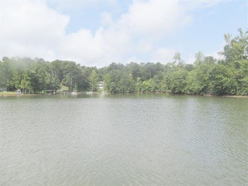 Gorgeous Lake Lots Tallapoosa : Alexander City : Tallapoosa County : Alabama