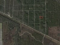 Large Corner Lot For Investment : Bunnell : Flagler County : Florida