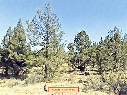 1.47 Acre Lot Near Alturas : Alturas : Modoc County : California