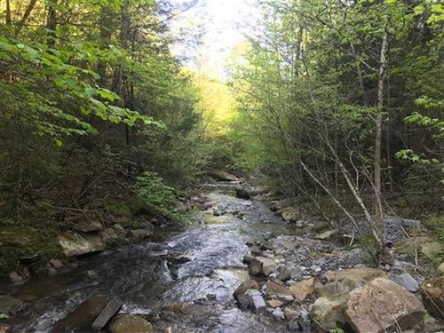 227.84 Acres Wooded Mountain Pro : Dayton : Rhea County : Tennessee