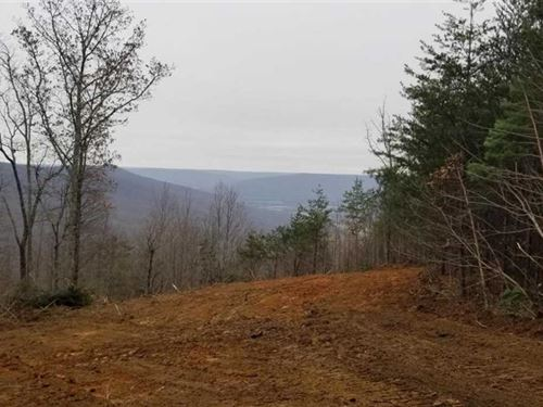 133.8 Beautiful Acres Located on : South Pittsburg : Marion County : Tennessee