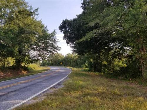 Banks Homesite And Hunting Property : Banks : Pike County : Alabama