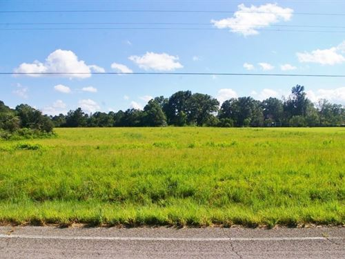 15.27 Acres Land For Sale Kentwood : Kentwood : Tangipahoa Parish : Louisiana