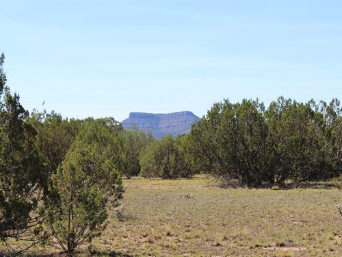 Mountain Acreage Seligman AZ Good : Seligman : Yavapai County : Arizona