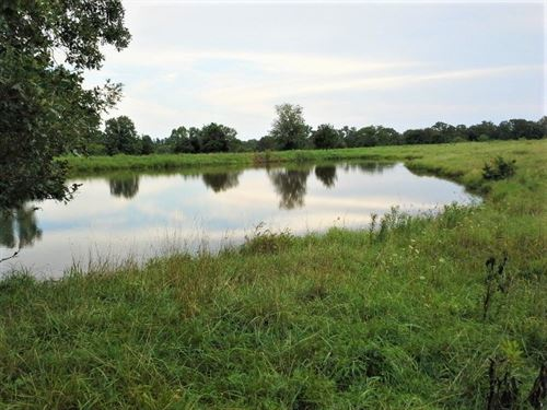 Awesome Hunting/Cattle Property : Richland : Camden County : Missouri