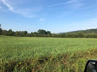 .56 Acres Unrestricted Land : Whitesburg : Hawkins County : Tennessee