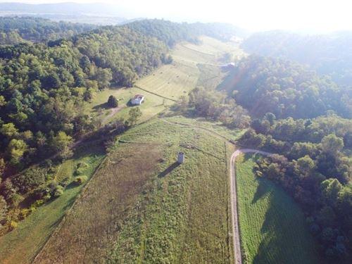 Trustee Land Auction 139.98 Acres : Crockett : Wythe County : Virginia